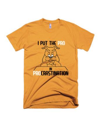 Pro in Procrastination